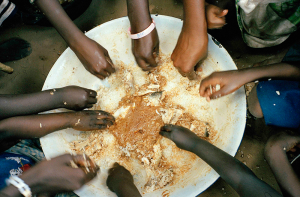 Gambia Food bowl. Credit: Felicia Webb
