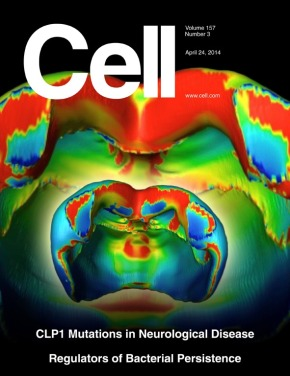 Image of the Month: Covering Science