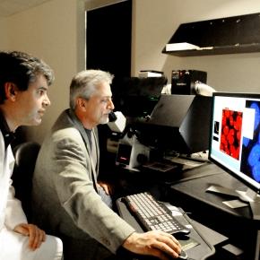 New Technology May Help Identify Safe Alternatives toBPA