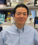 Dr. Jin Wang, associate professor of pathology & immunology