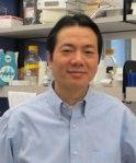 Dr. Jin Wang, associate professor of pathology & immunology