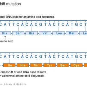 Frame shift defines molecular diagnosis in raredisease