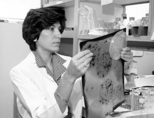 Dr. Huda Zoghbi checks a gel.