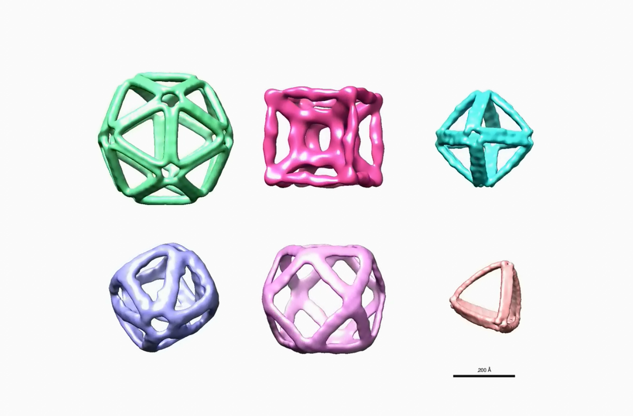 DNA origami: designing structures with potential new uses ... - photo#25