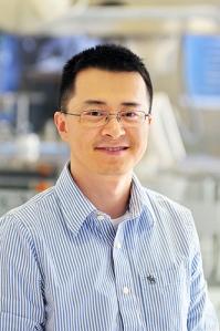 Li Xin, Ph.D.