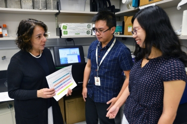 Dr. Susan Rosenberg discusses data with co-authors Jun Xia and Qian Mei.