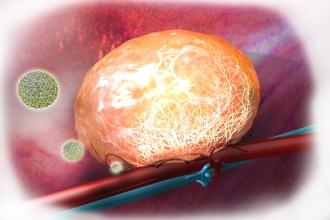 tumor-with-quantum-dot-illumination